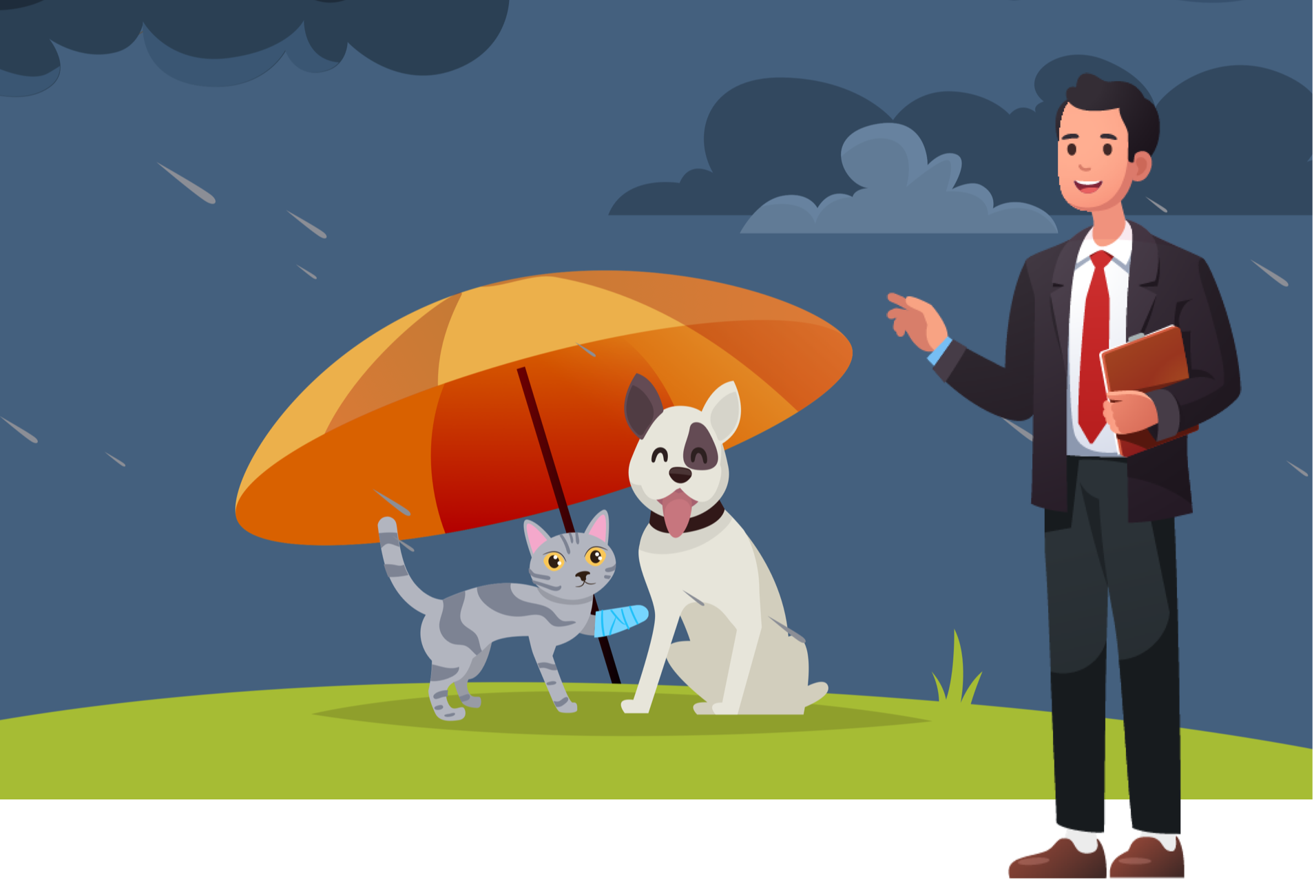A free online webinar that help veterinary staff learn about pet insurance.