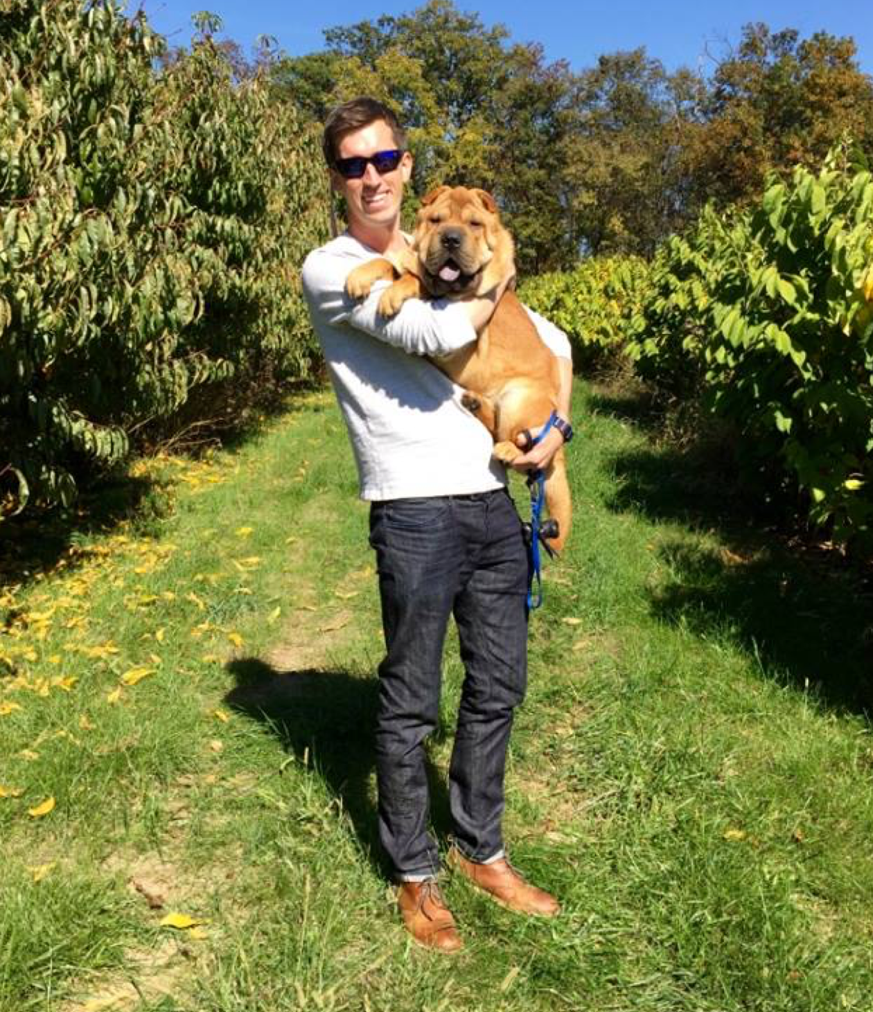 Pawlicy Advisor CEO Woody Mawhinney and his Shar Pei Wrigley