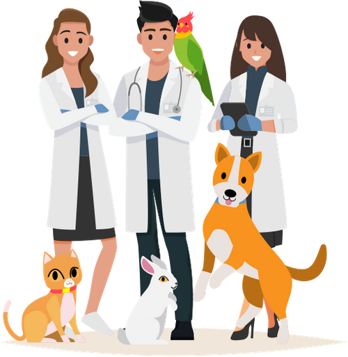 Veterinarians who recommend Pawlicy Advisor