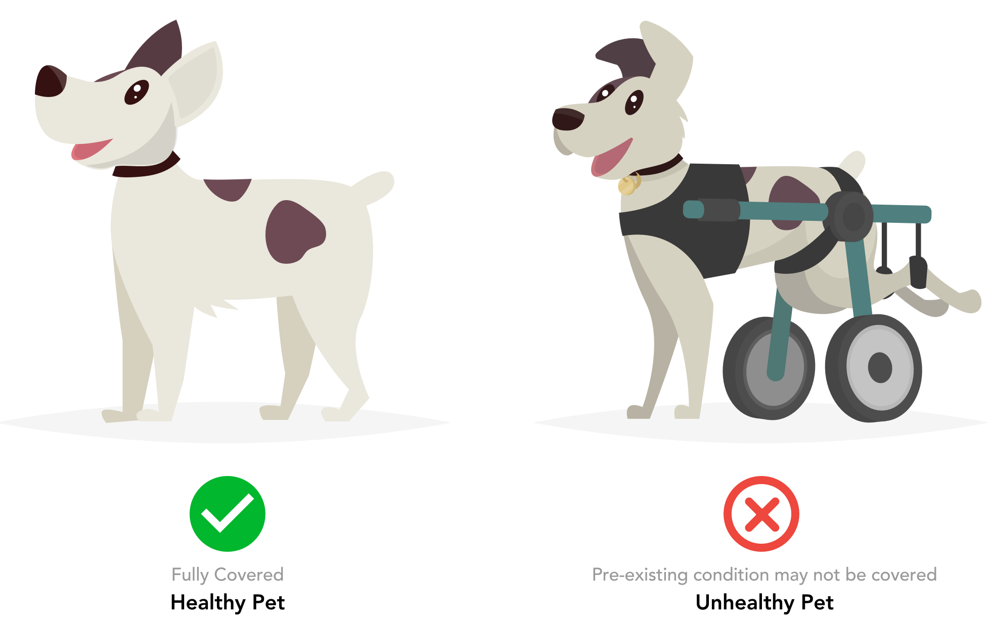 A dog that can be covered by pet insurance because he has no pre-existing conditions, and a dog who won't be covered by pet insurance for their pre-existing condition.