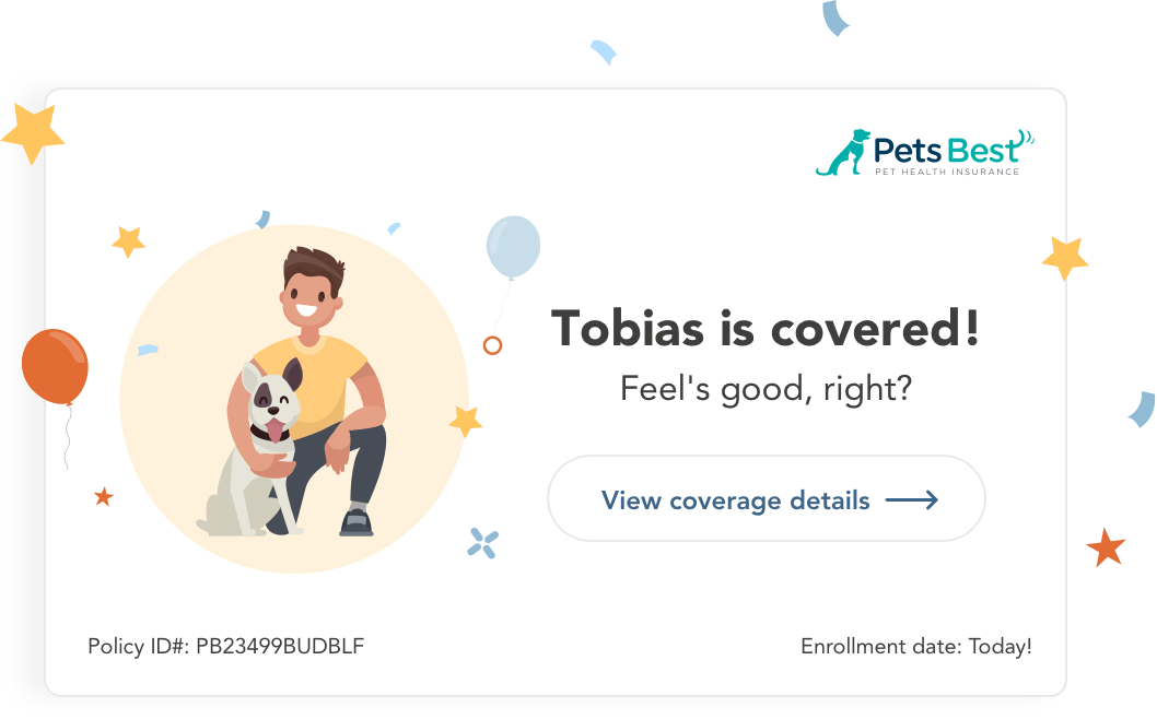 A pet newly enrolled in insurance